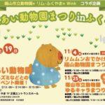 2017.11.18〜19 駅前ふれあい動物園
